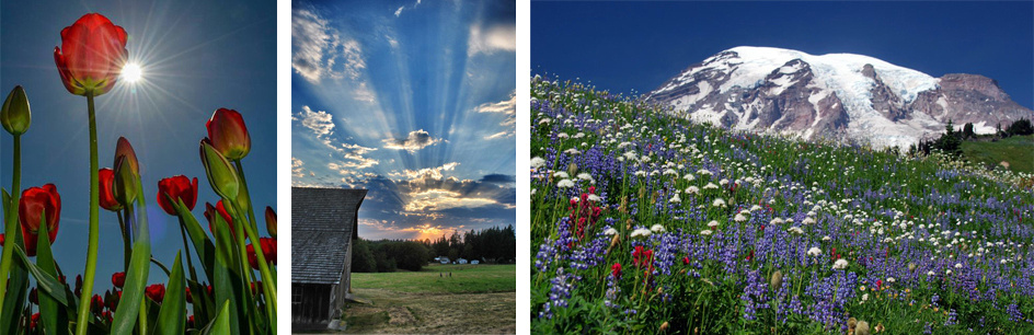 Pacific Northwest Photography